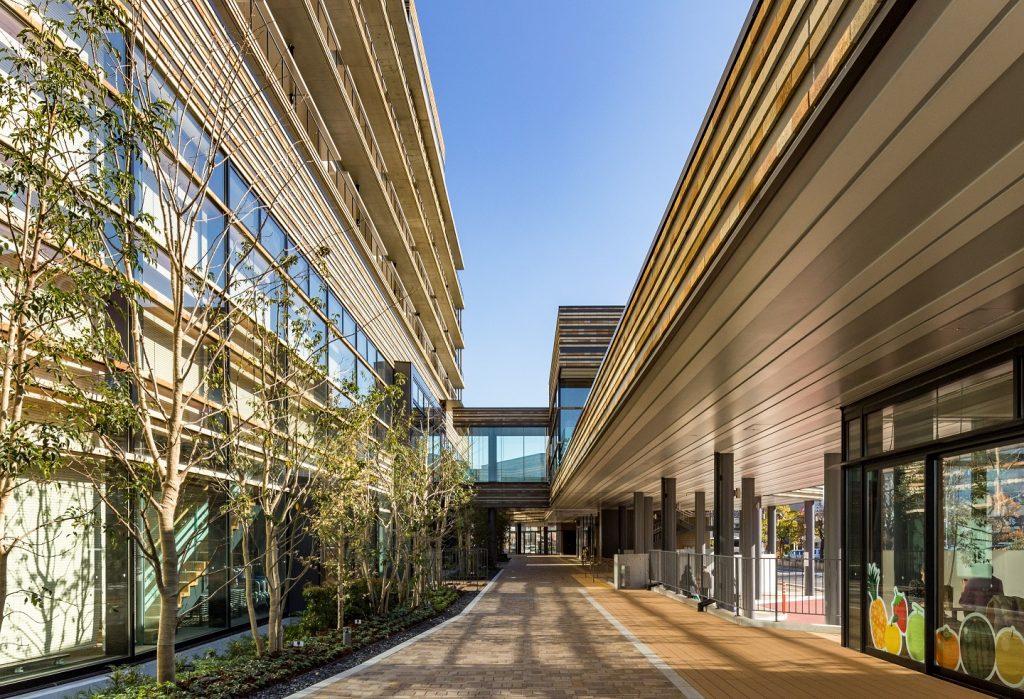大和建設株式会社 令和元年 鳥取市役所新本庁舎